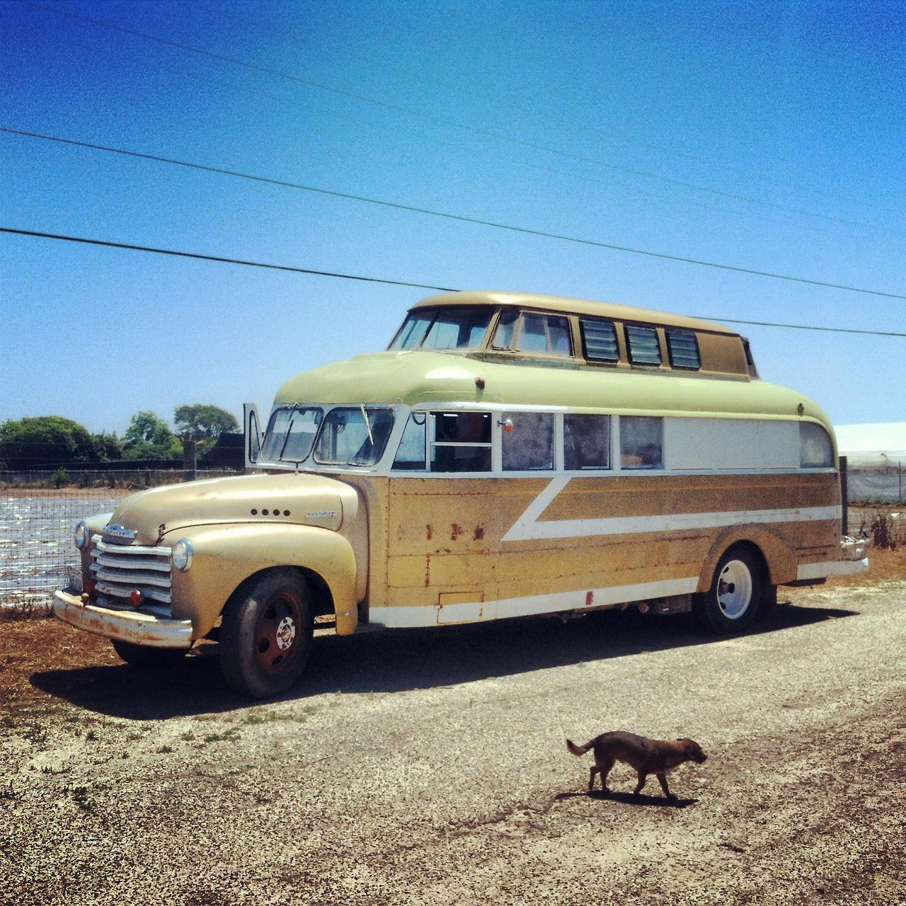 Home Wheels Converted Buses Love