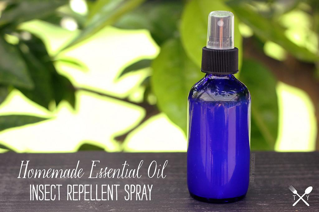 Homemade Essential Oil Insect Repellent Spray Tasty