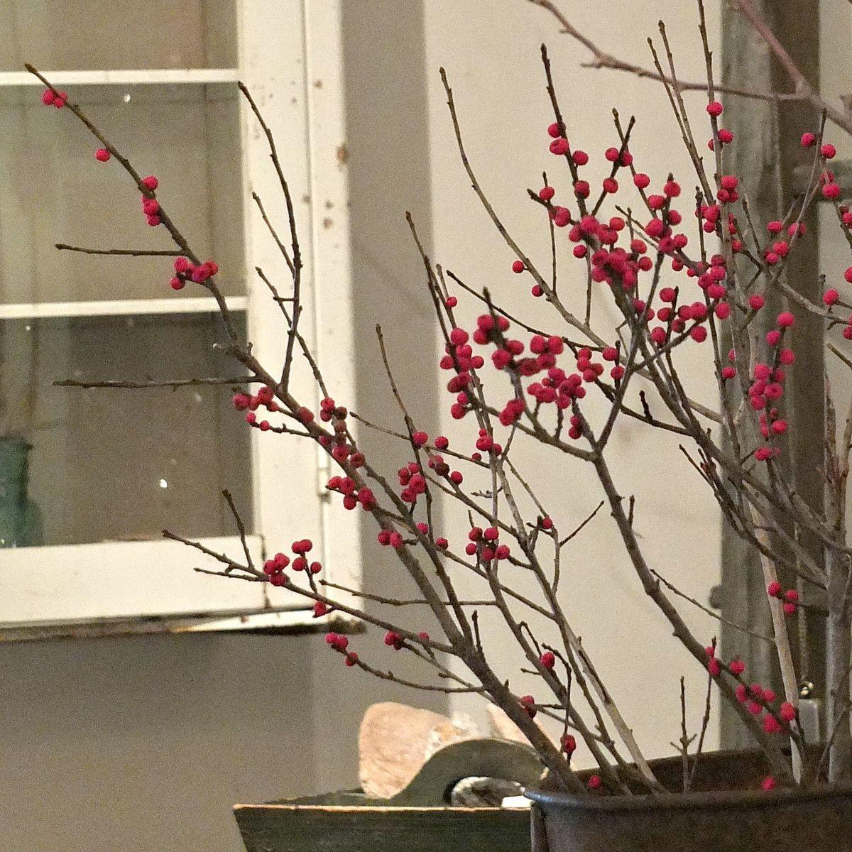Hometalk Easy Diy Winterberry Branches