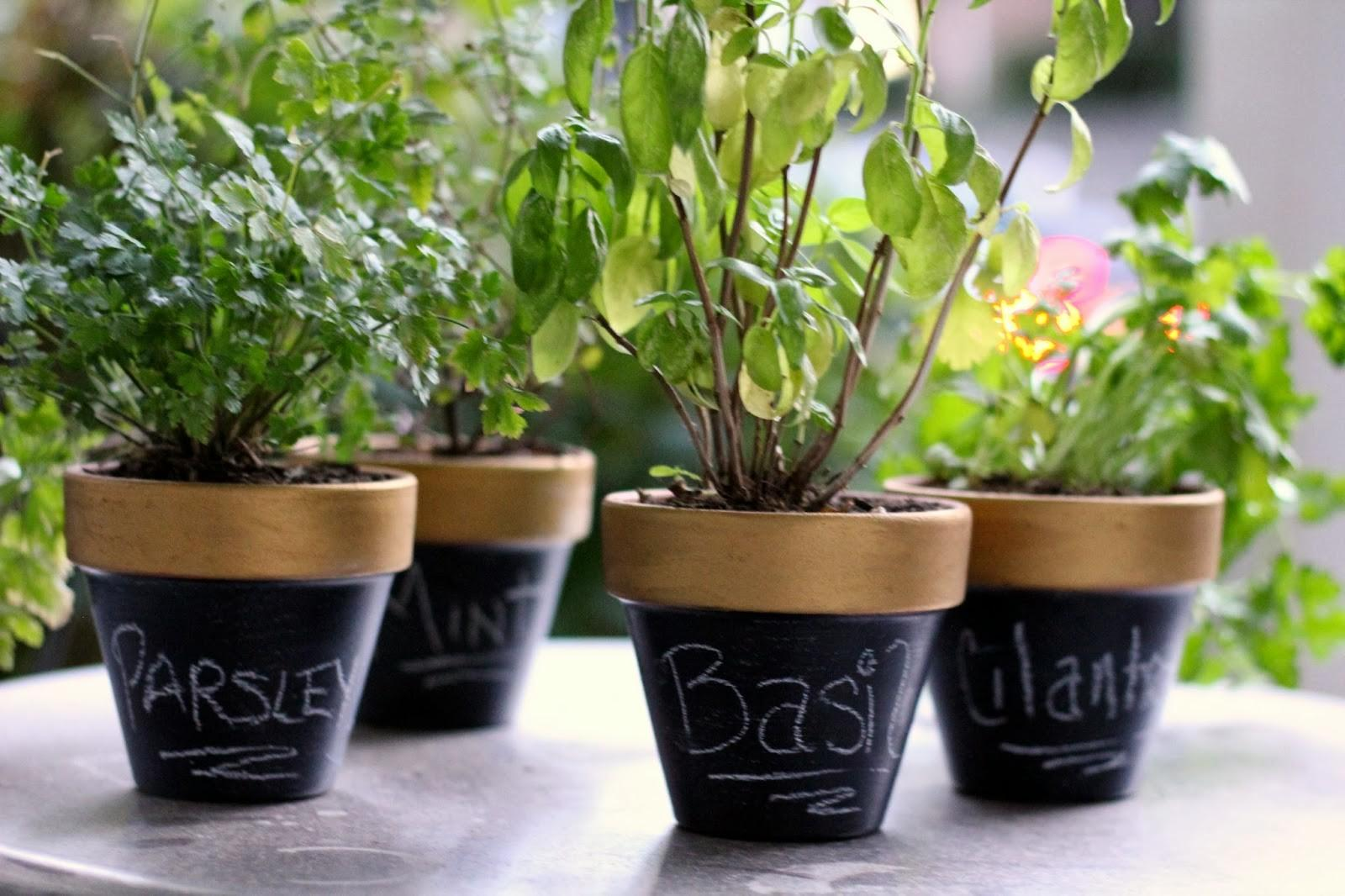 Homevolution Diy Gold Chalkboard Flower Pots