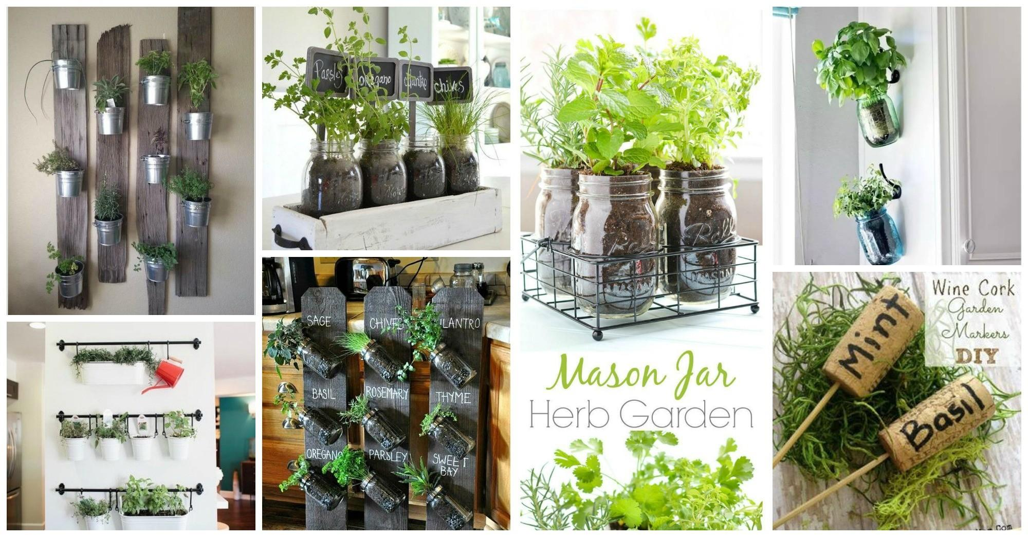 Ideas Styling Your Home Indoor Herb Gardens