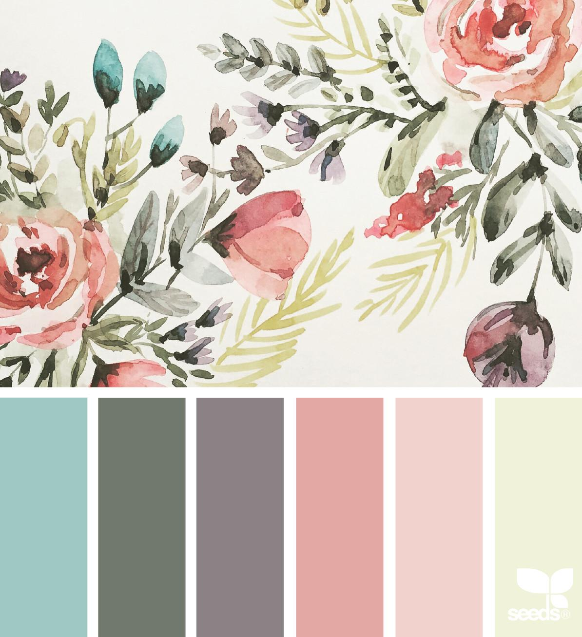 Illustrated Hues Design Seeds