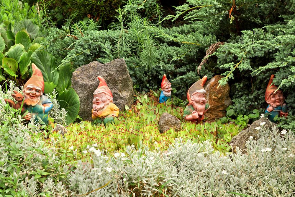 Indecent Story Ornamental Hermit Man Hired