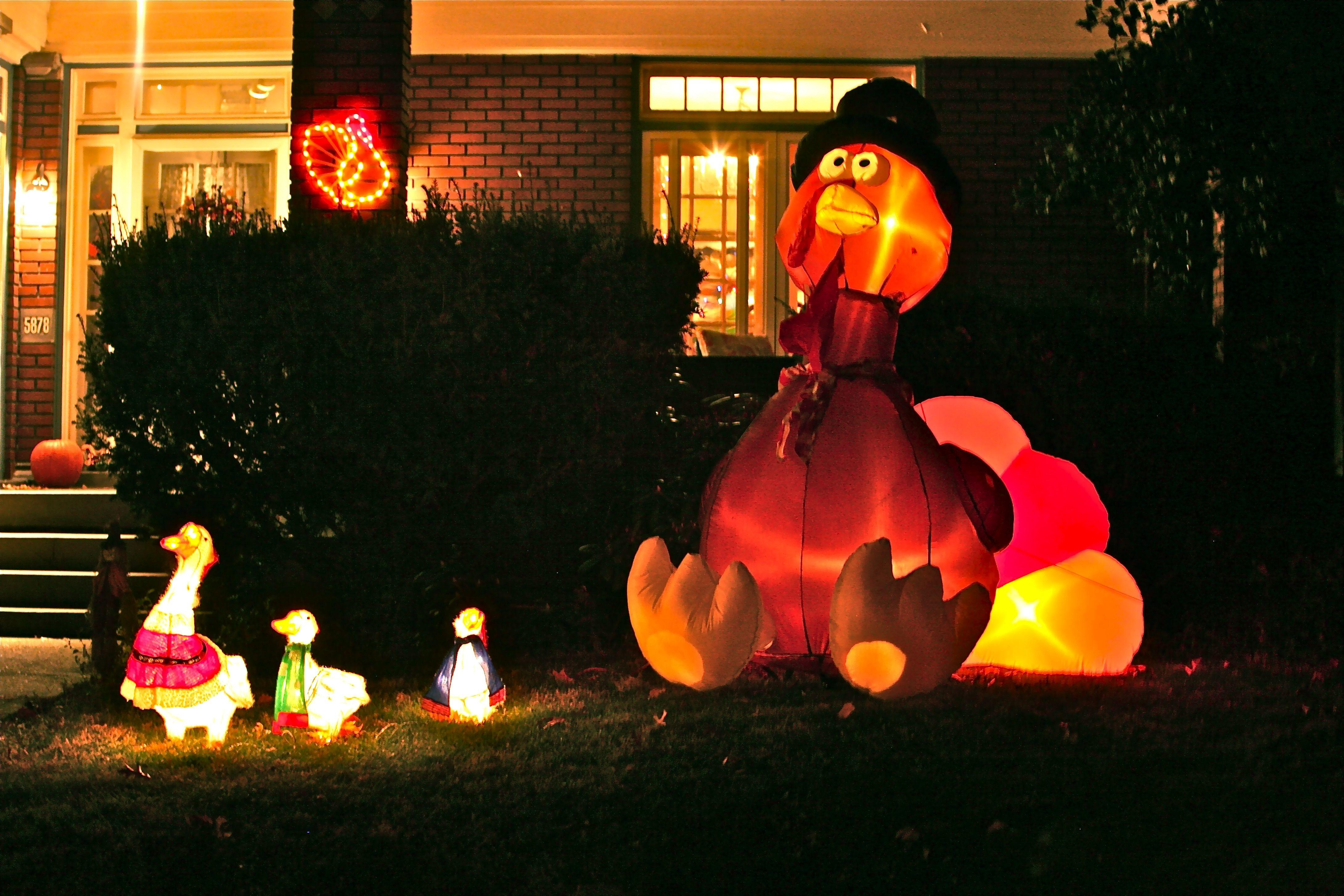 Inflatable Turkey Sightings Thanksgiving Eve Ruth