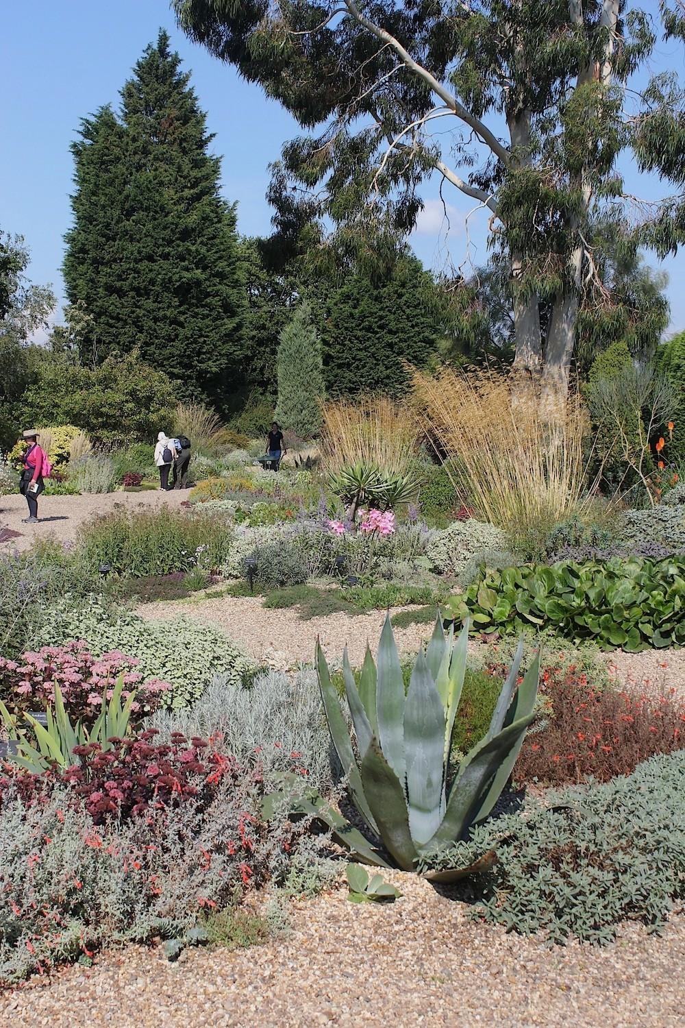 Inspiration Beth Chatto Garden Tips Drought