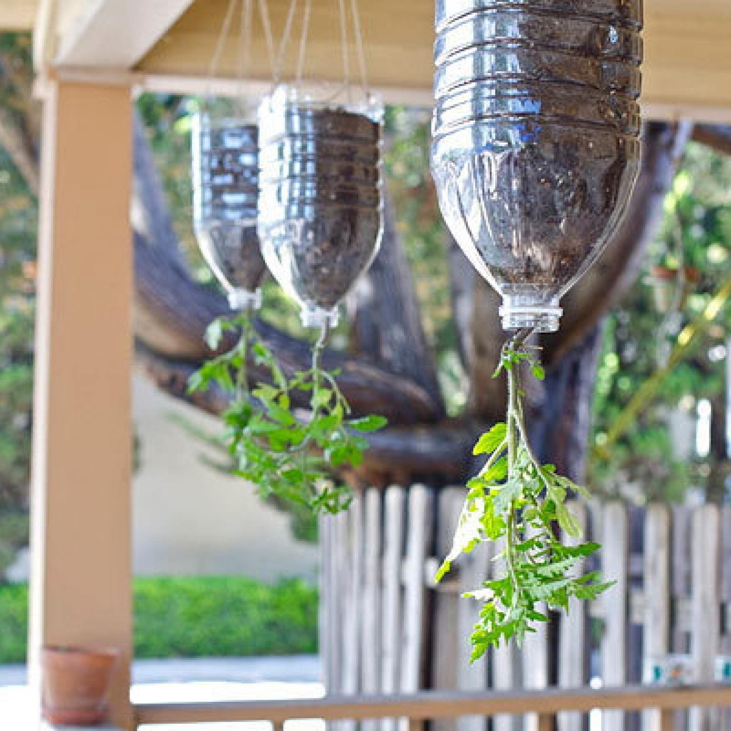 Inspired Gardening Projects Kids Parenting