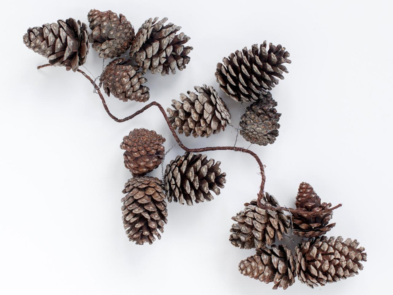 Instructions Making Pinecone Garland Holidays