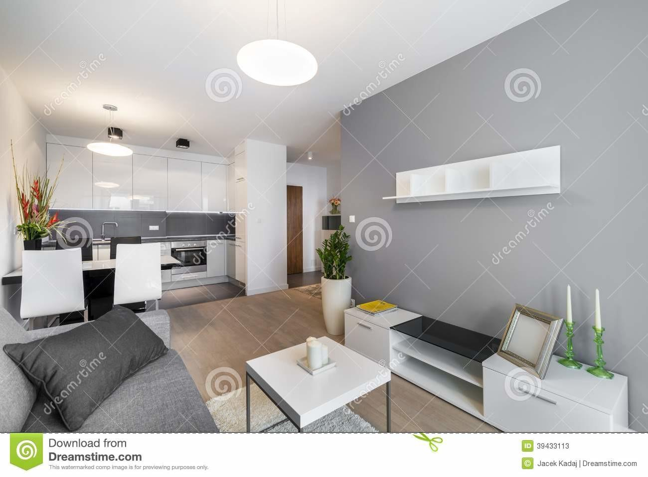 Captivating Contemporary Living Room Kitchen Compositions That Will Accommodate You Great Photos Decoratorist