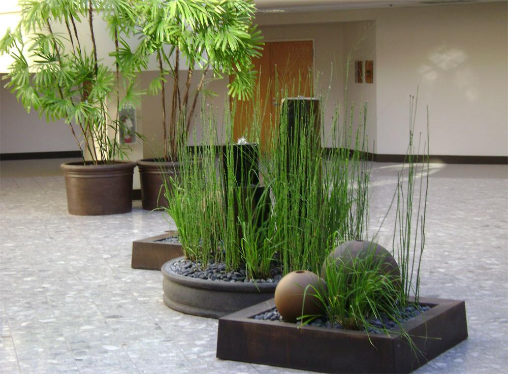 Interior Plant Design Home