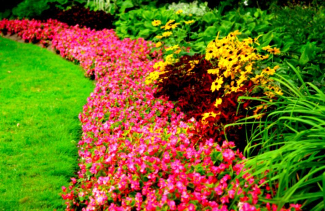 Iowa Flower Lawn Garden Show Promotions Landscaping
