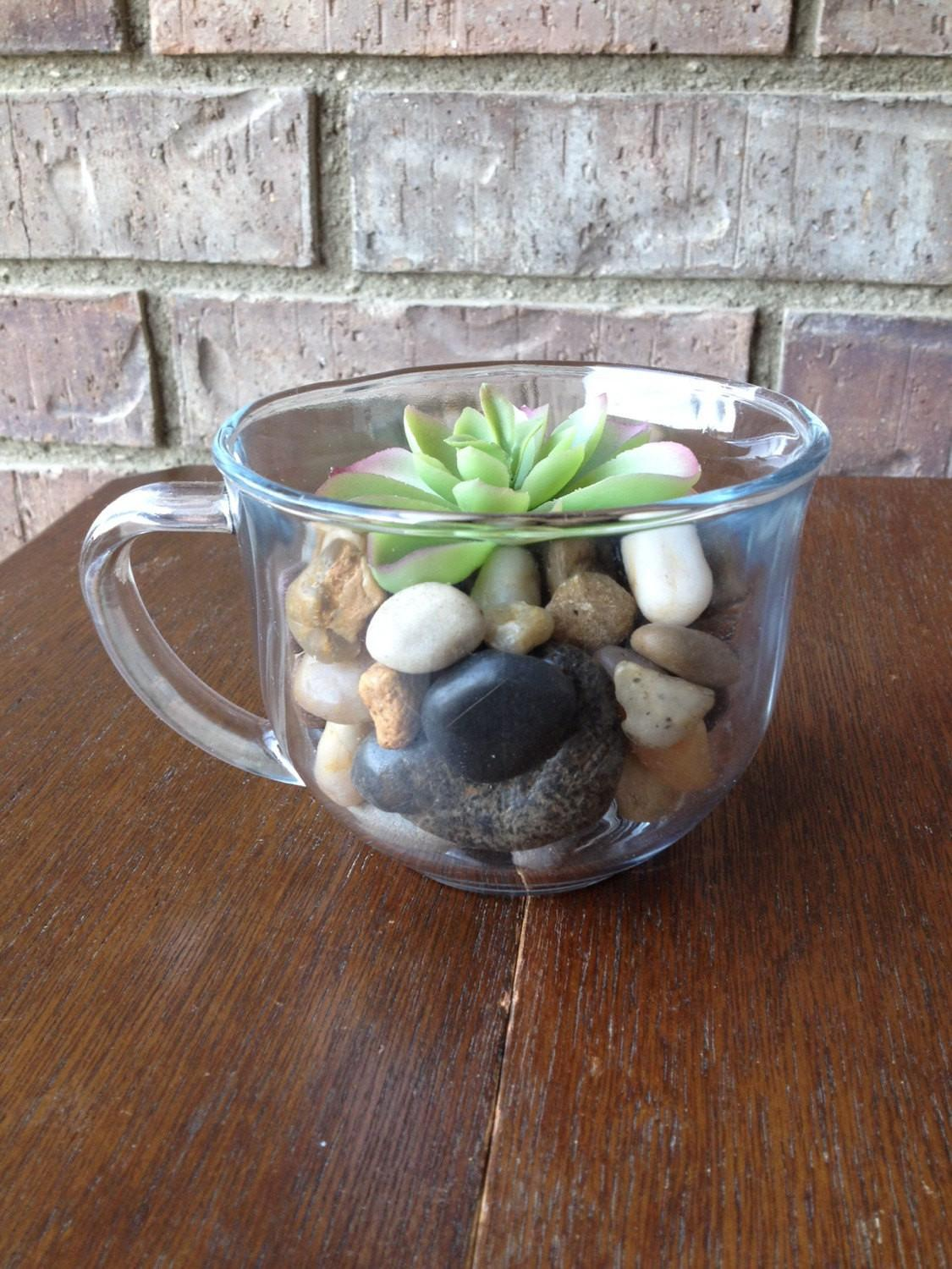 Items Similar Diy Faux Succulent Tea Cup Terrarium Etsy