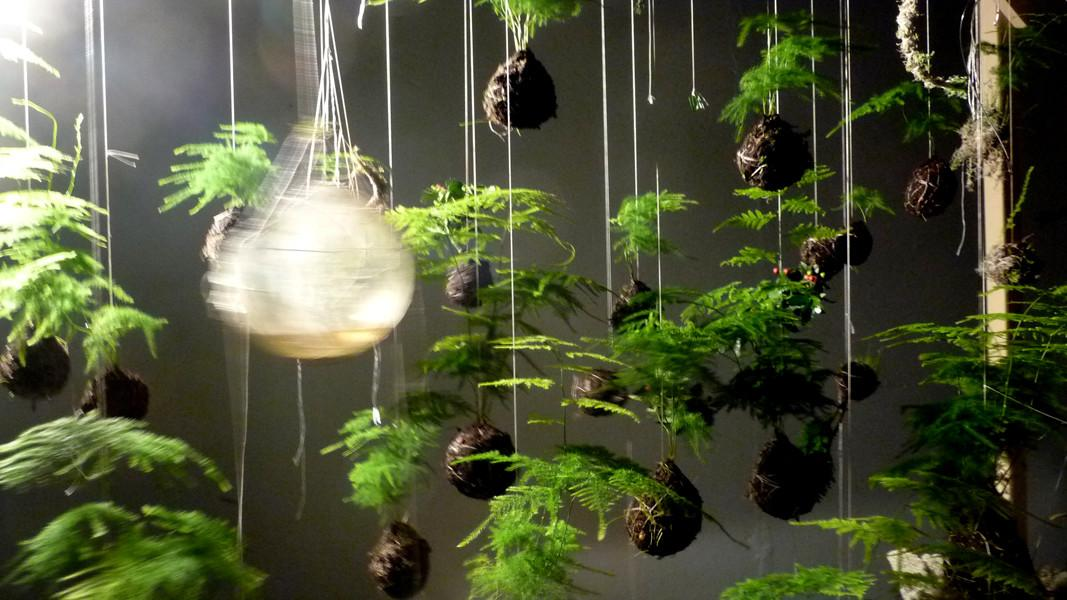 Japanese String Gardens Suspend Plants Above Ground Colossal
