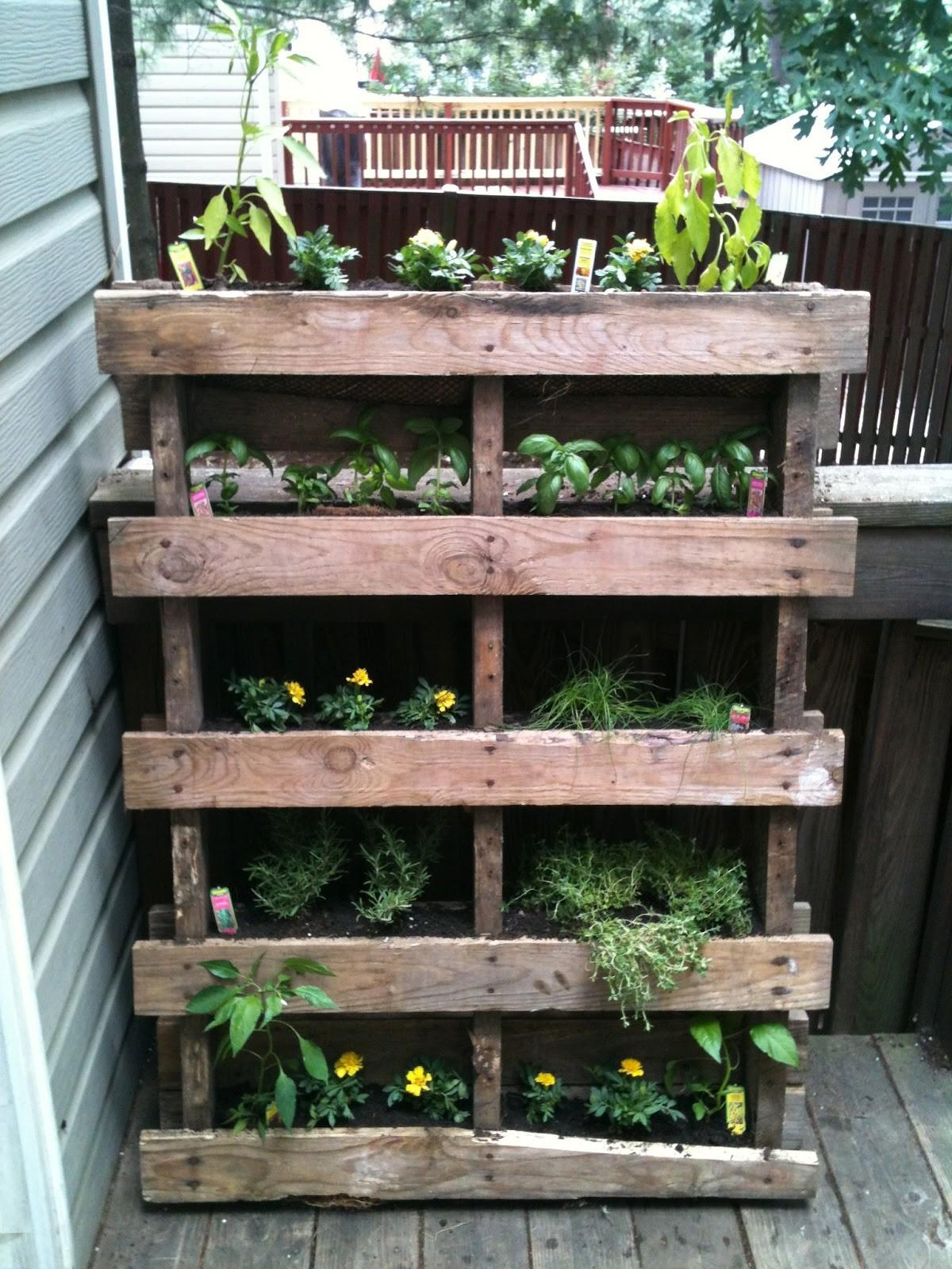 Kids Giggles Vertical Pallet Garden Project