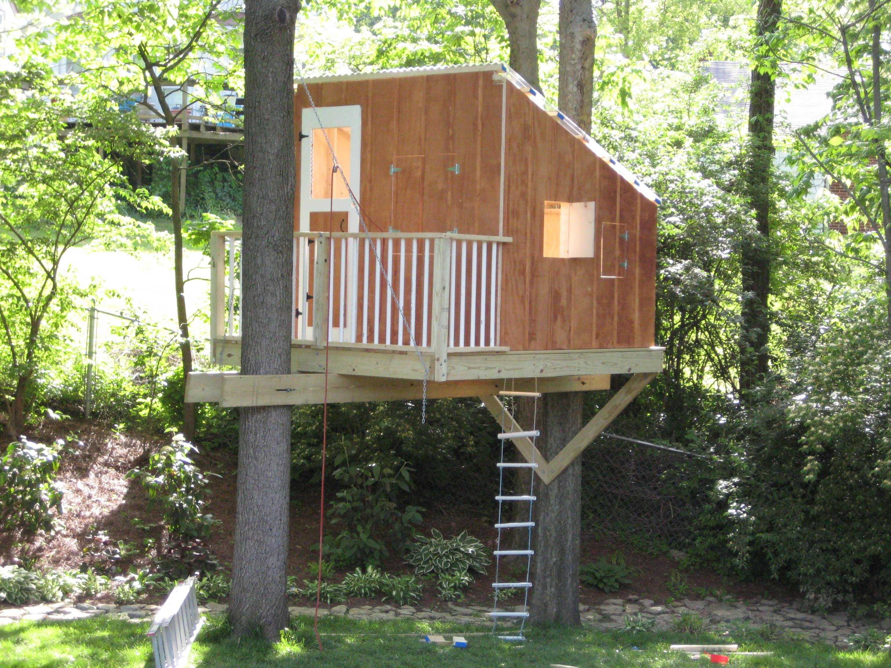 Kids Report Treehouse Done