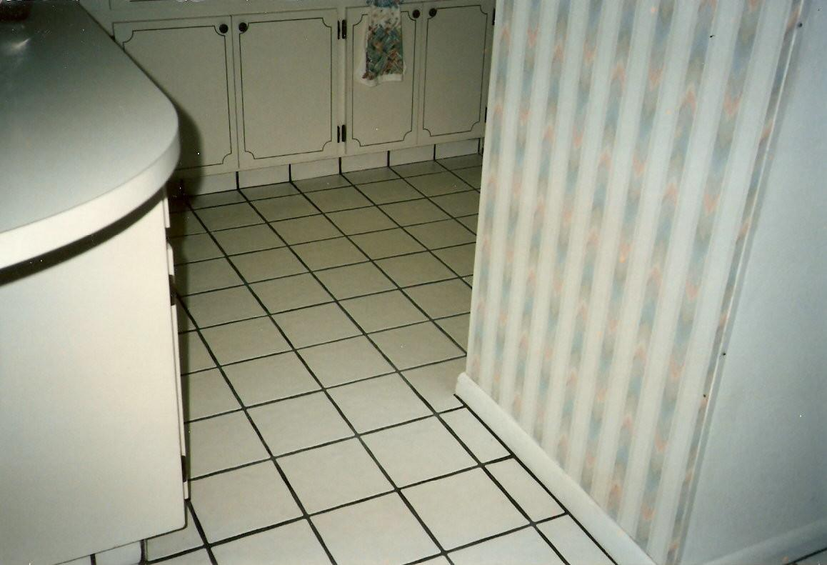Kitchen Grout Cleaner Home Design