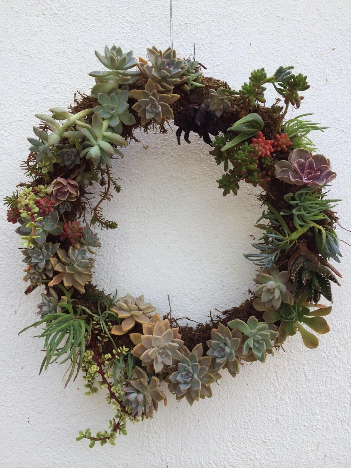 Kriselkeeper Diy Succulent Wreath
