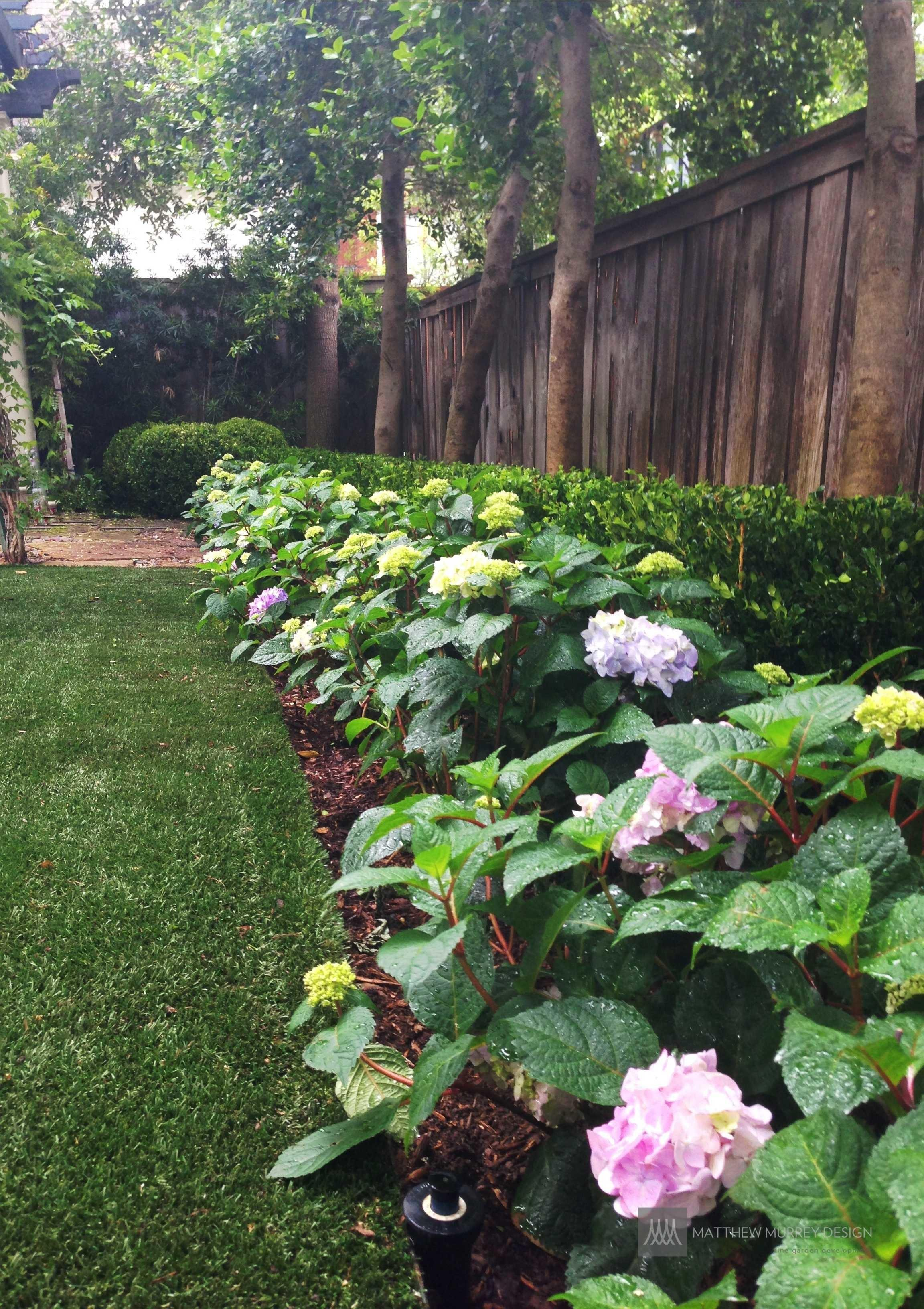 Landscape Ideas Best Solutions Shade