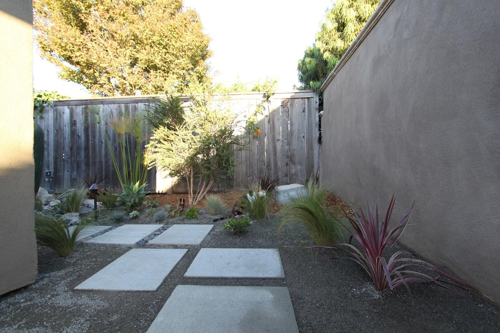 Landscaping Mid Century Modern Home