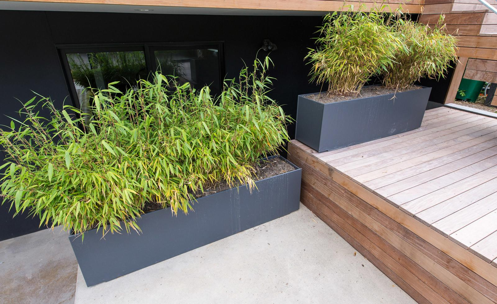 Landscaping Strategies Modern Home Build Blog