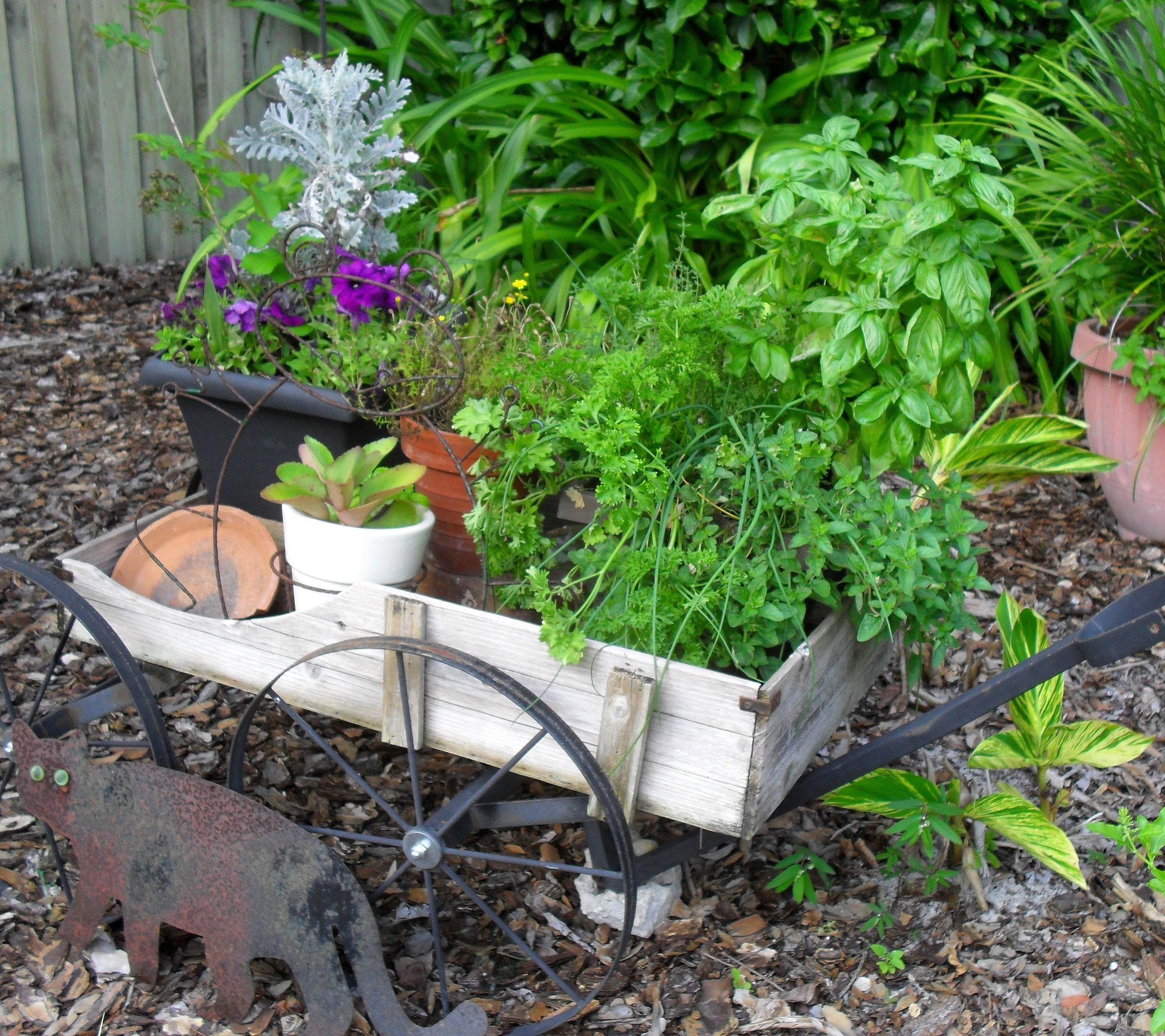 Landscaping Unusual Garden Ideas Traditional Decor