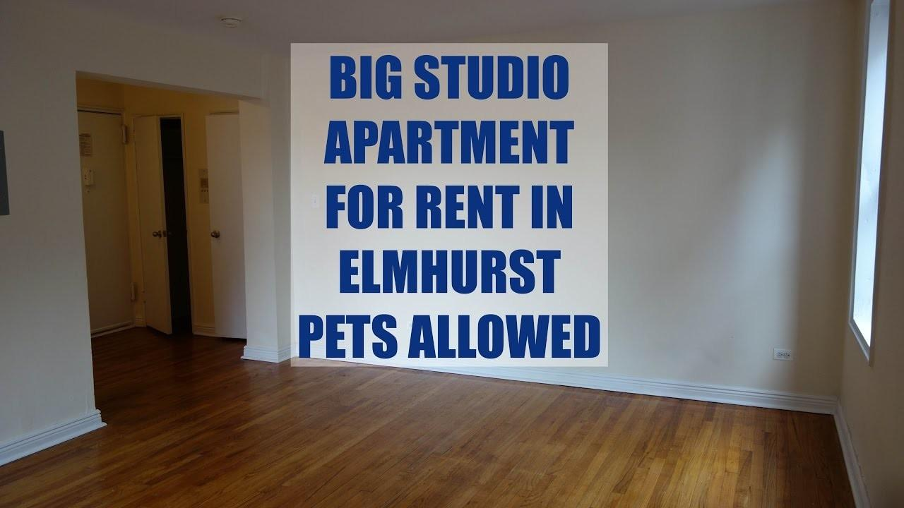 Large Bright Studio Apartment Rent Elmhurst