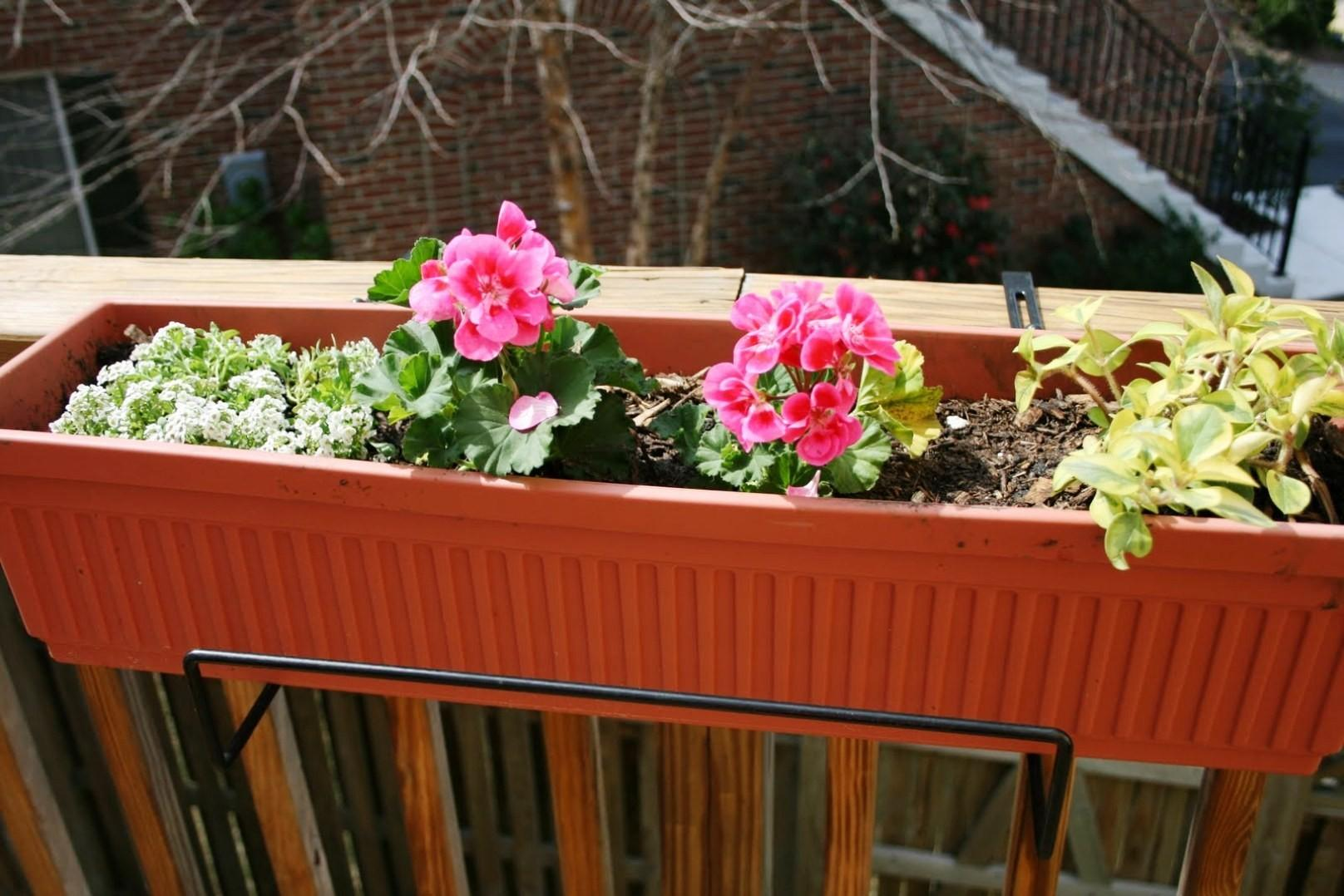 Large Deck Planters Iimajackrussell Garages Best