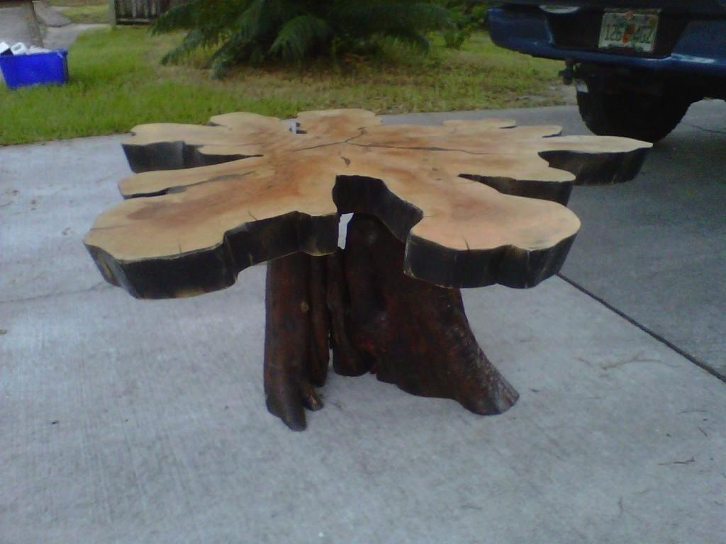 Large Tree Stump Coffee Table Awesome Cross Section
