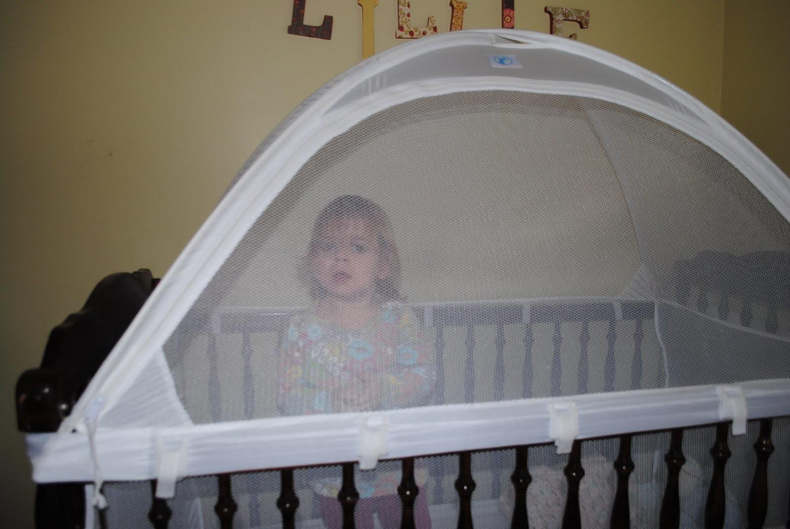 Laughing Learning Crib Tents Decoratorist 214308
