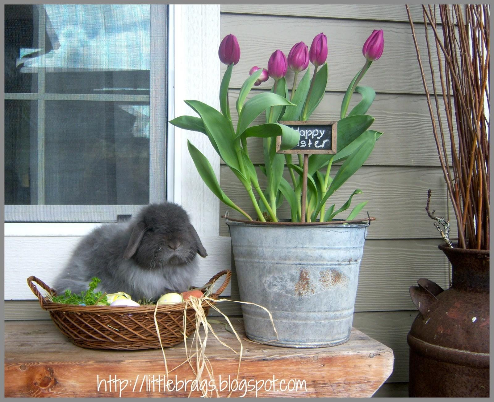 Little Brags Easter Decor Around House Our Bunny