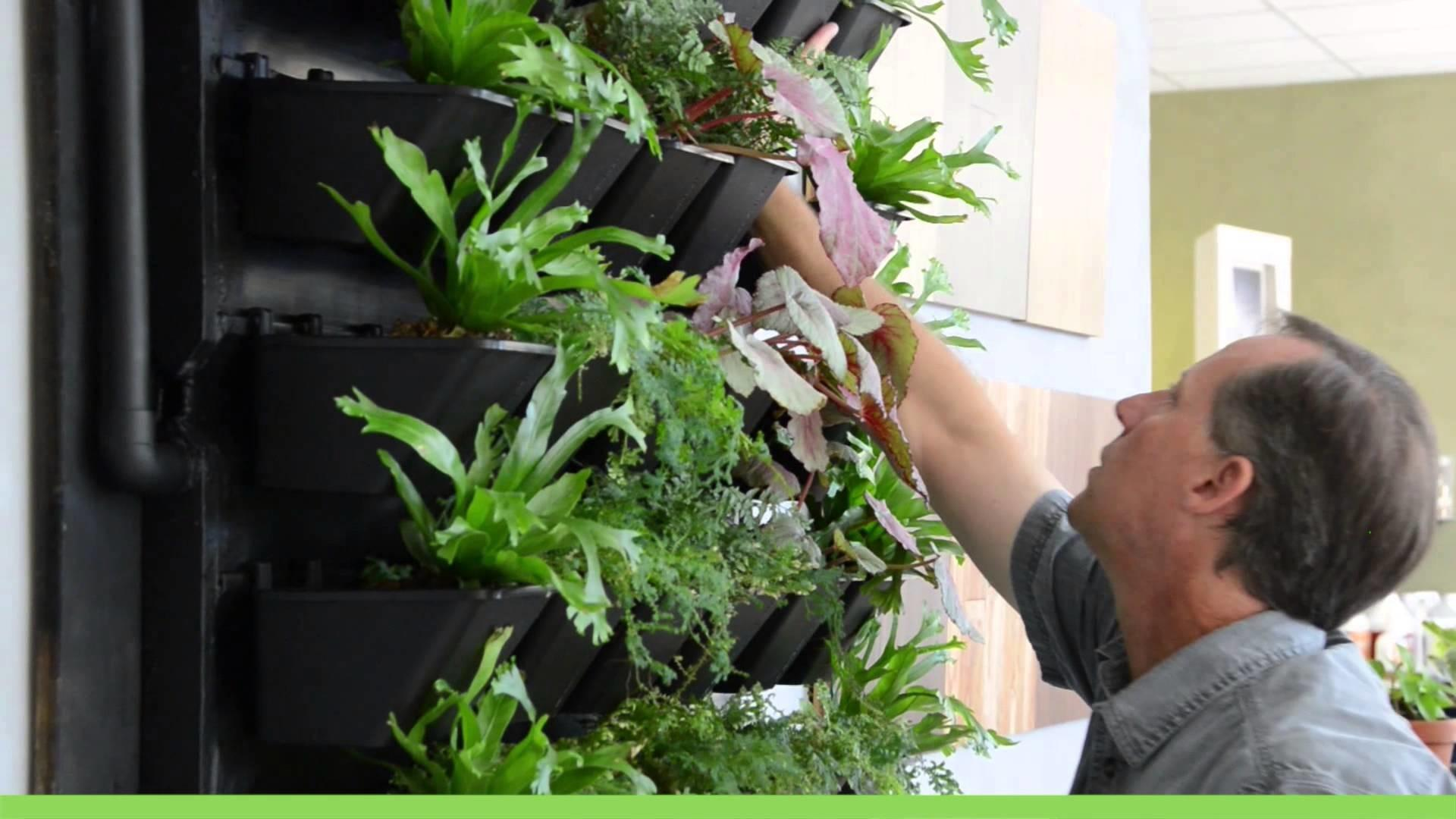 Living Air Green Walls Active Planting System