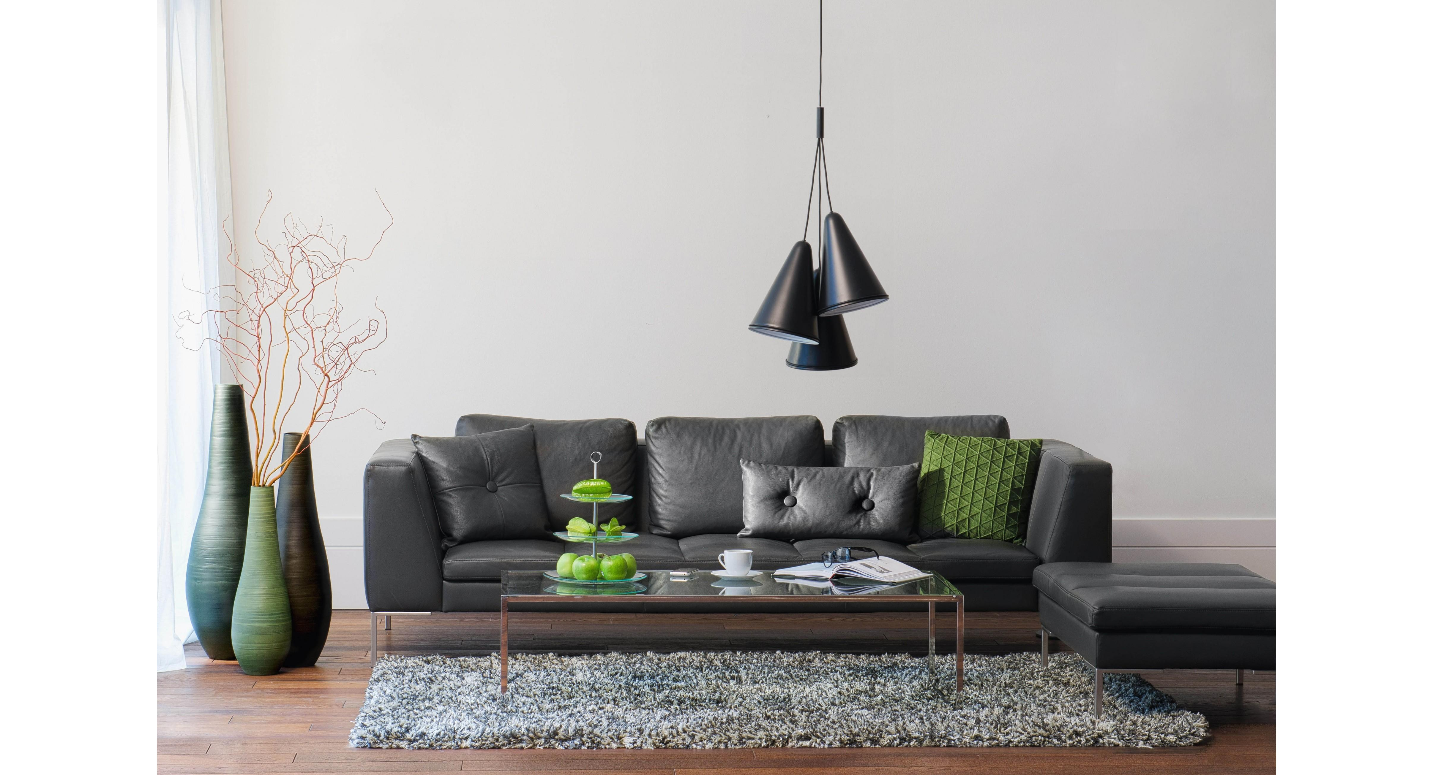 Living Room Dark Furniture Decorations