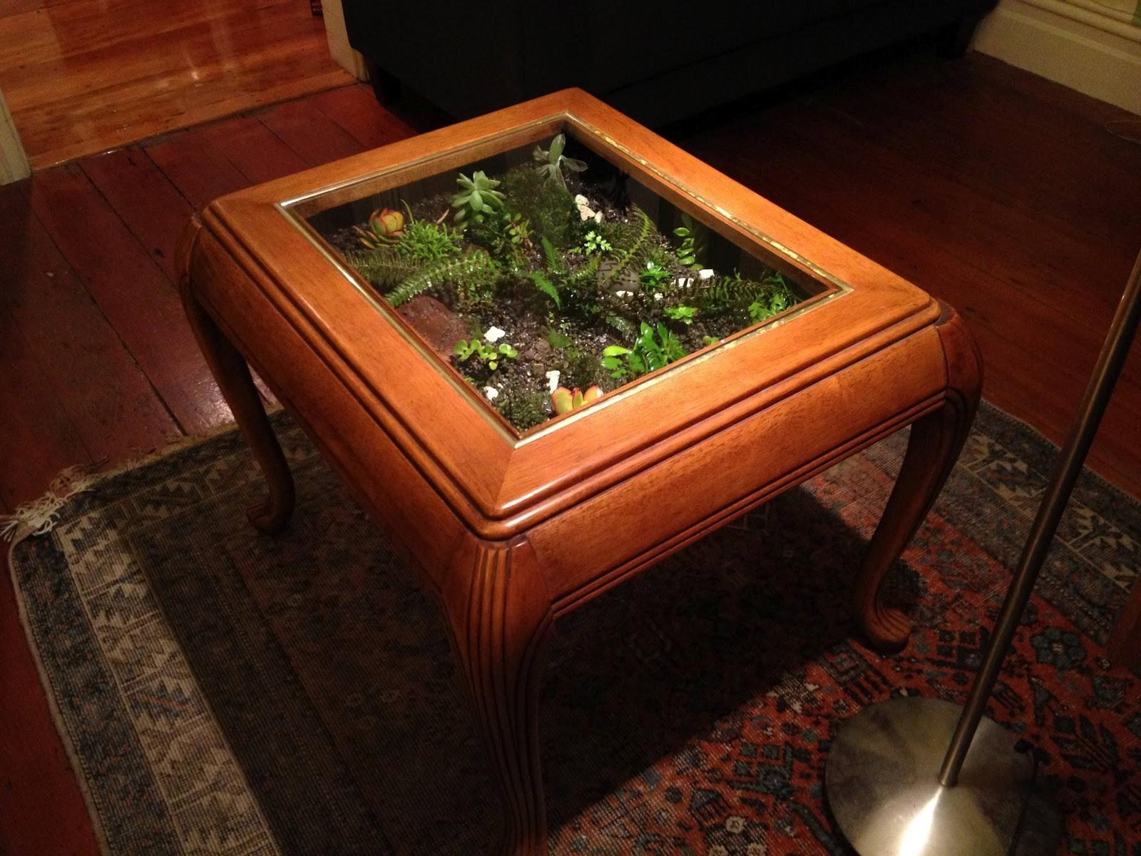 Living Room Rectangular Metal Glass Terrarium Coffee
