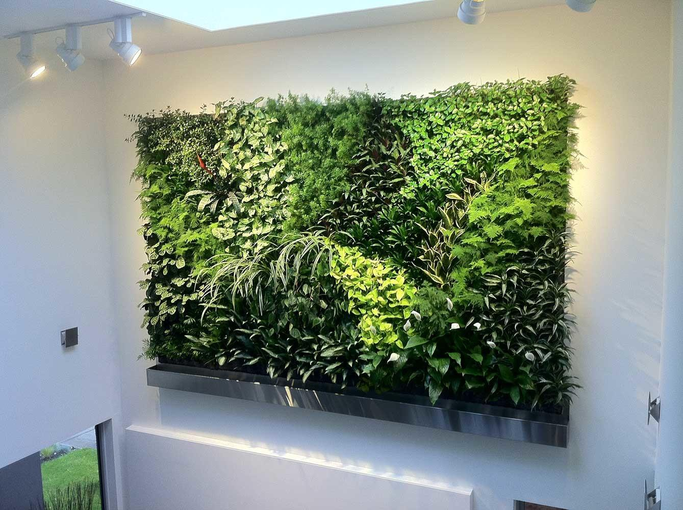 Living Walls Green Plant Vertical Garden