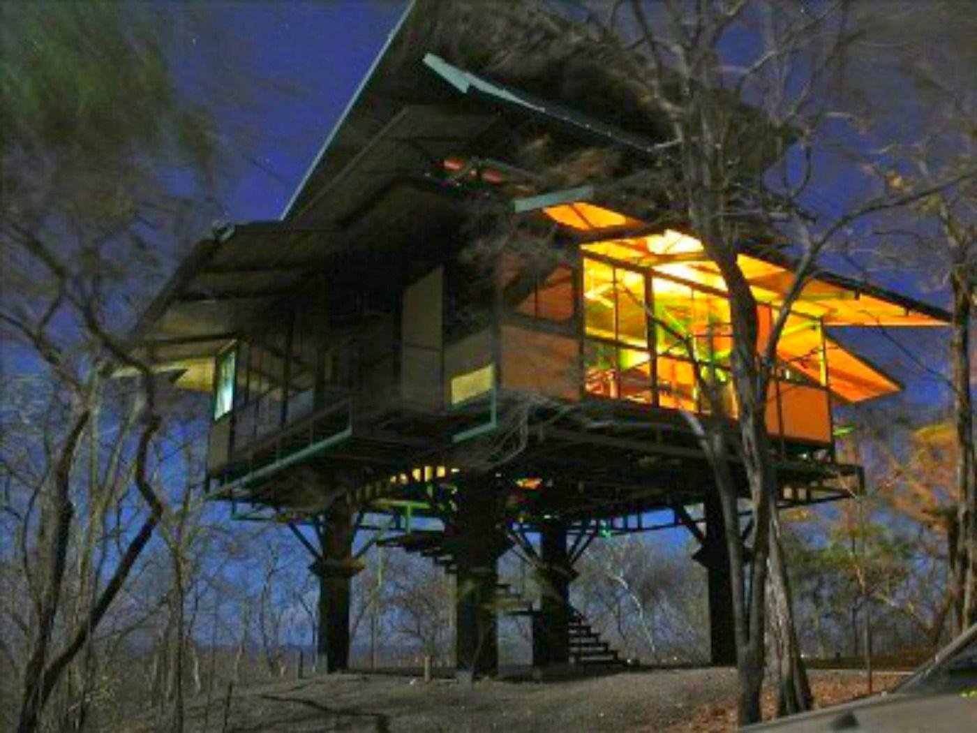 Lofty Treehouse Vacation Homes Can Rent