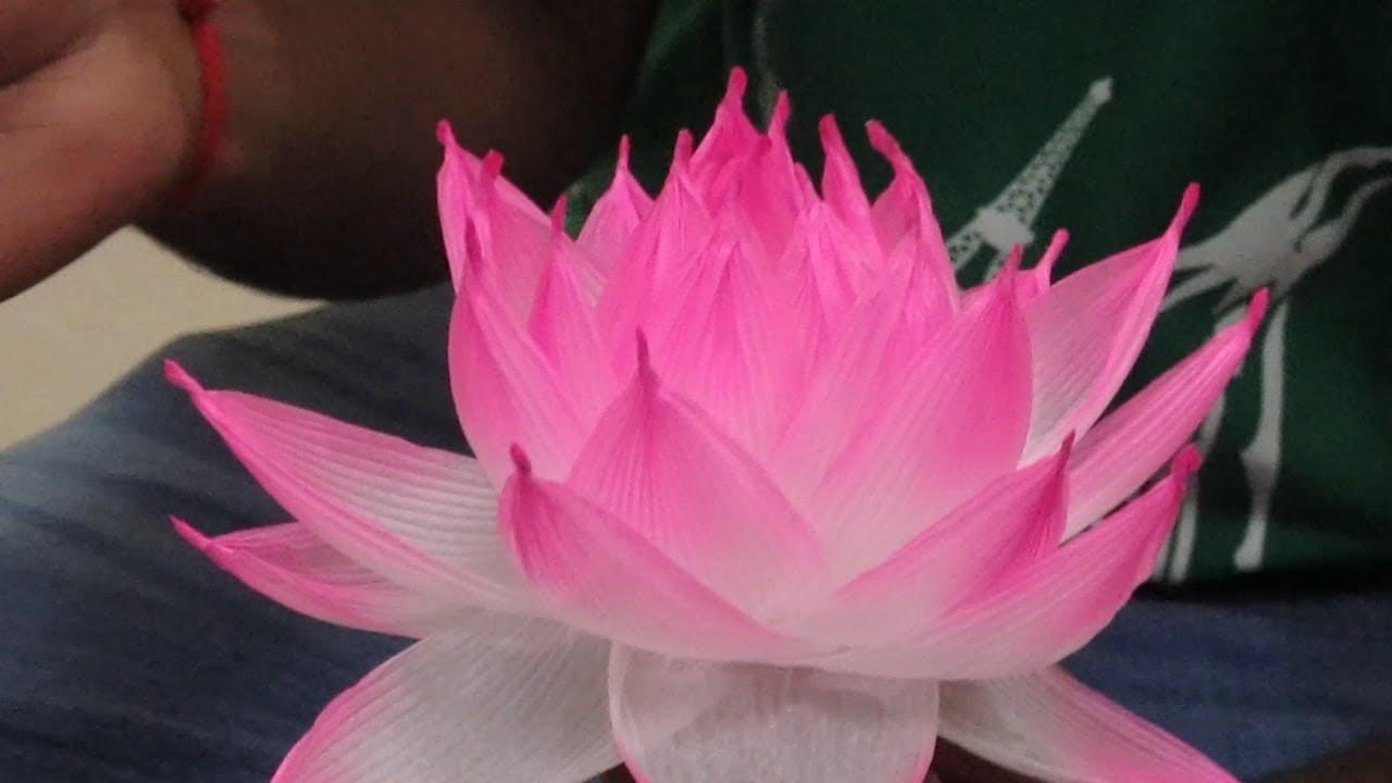 Lotus Lantern Making Workshop