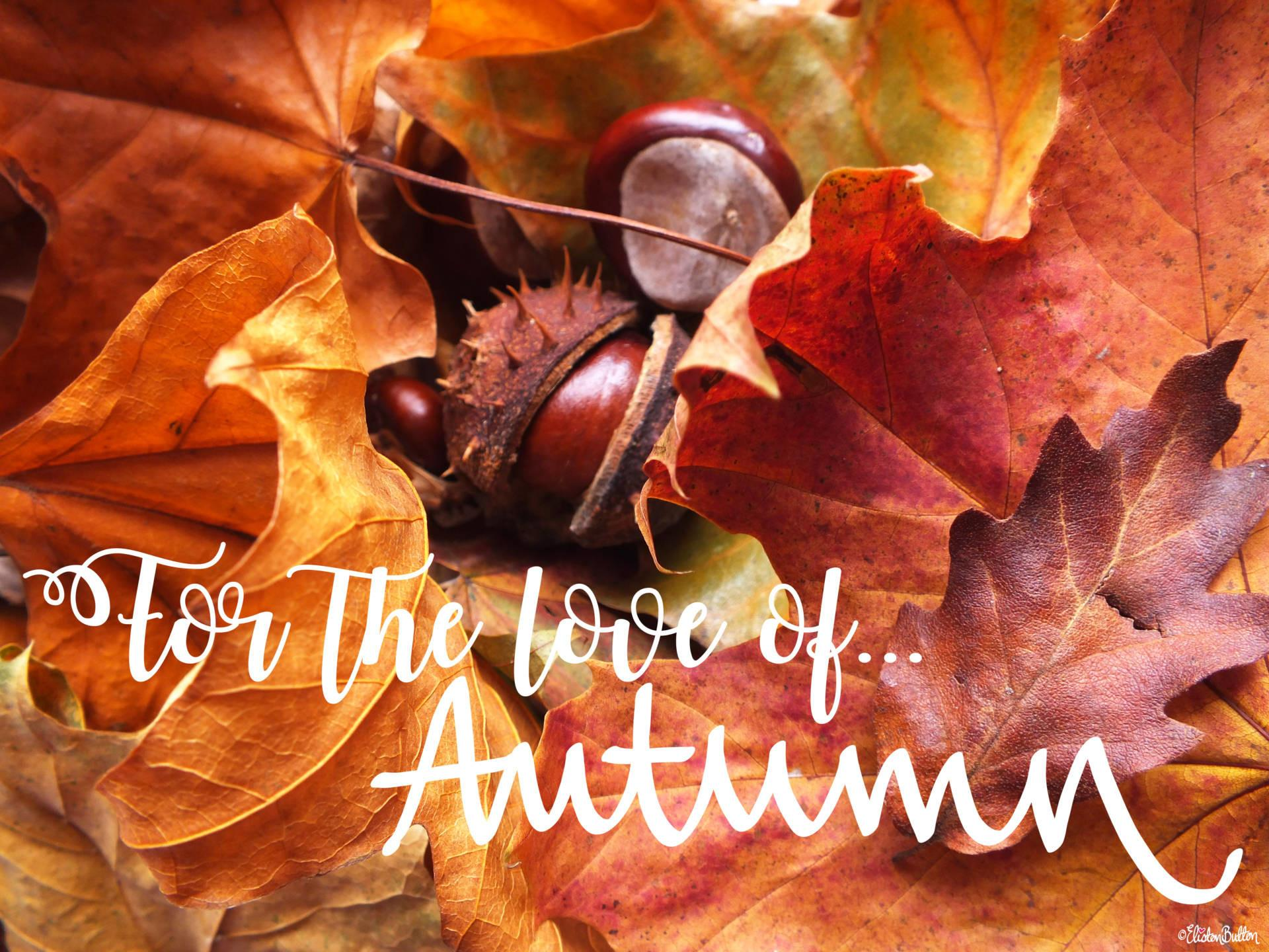 Love Autumn Eliston Button