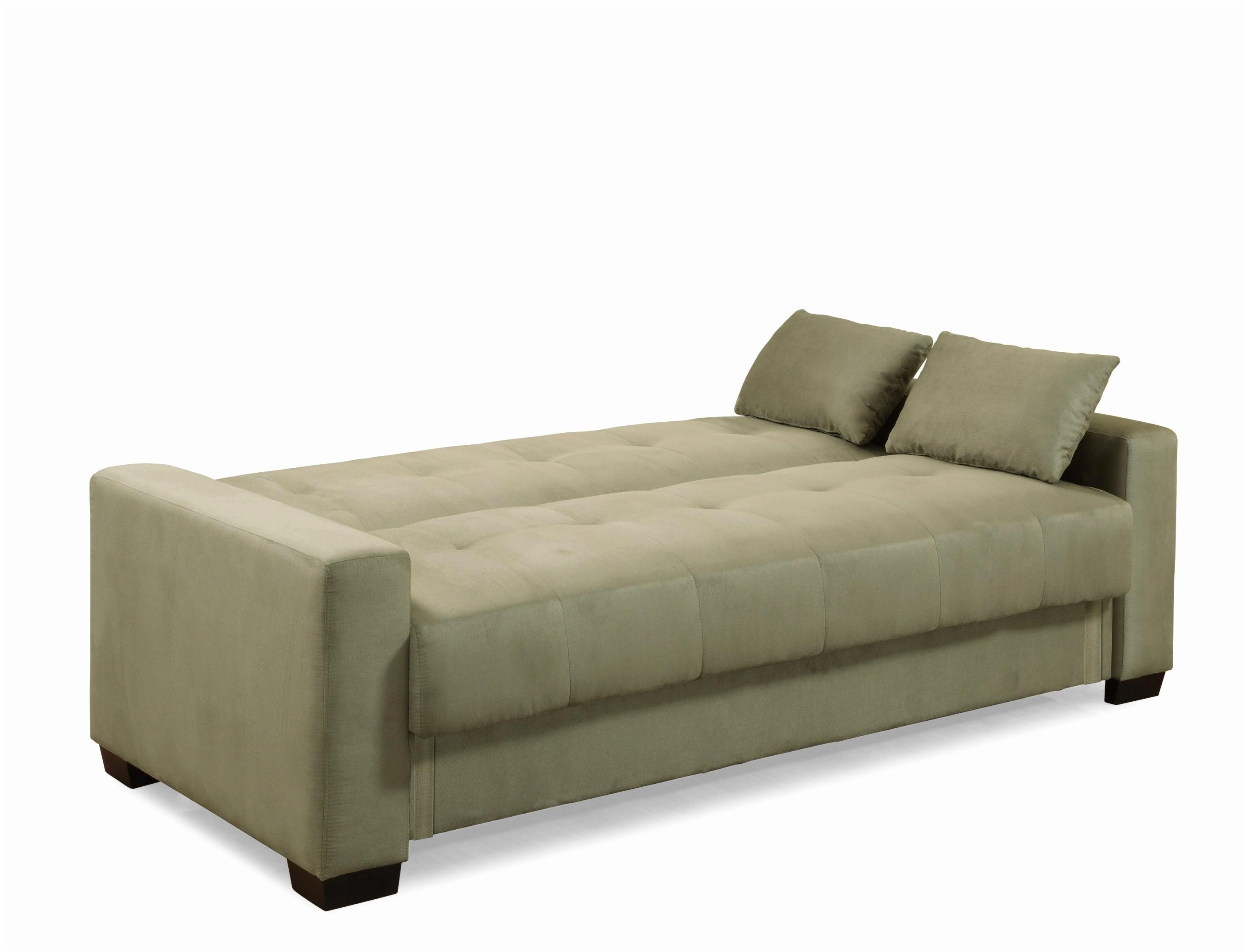 Lovely Convertible Sofa Bed Storage Best