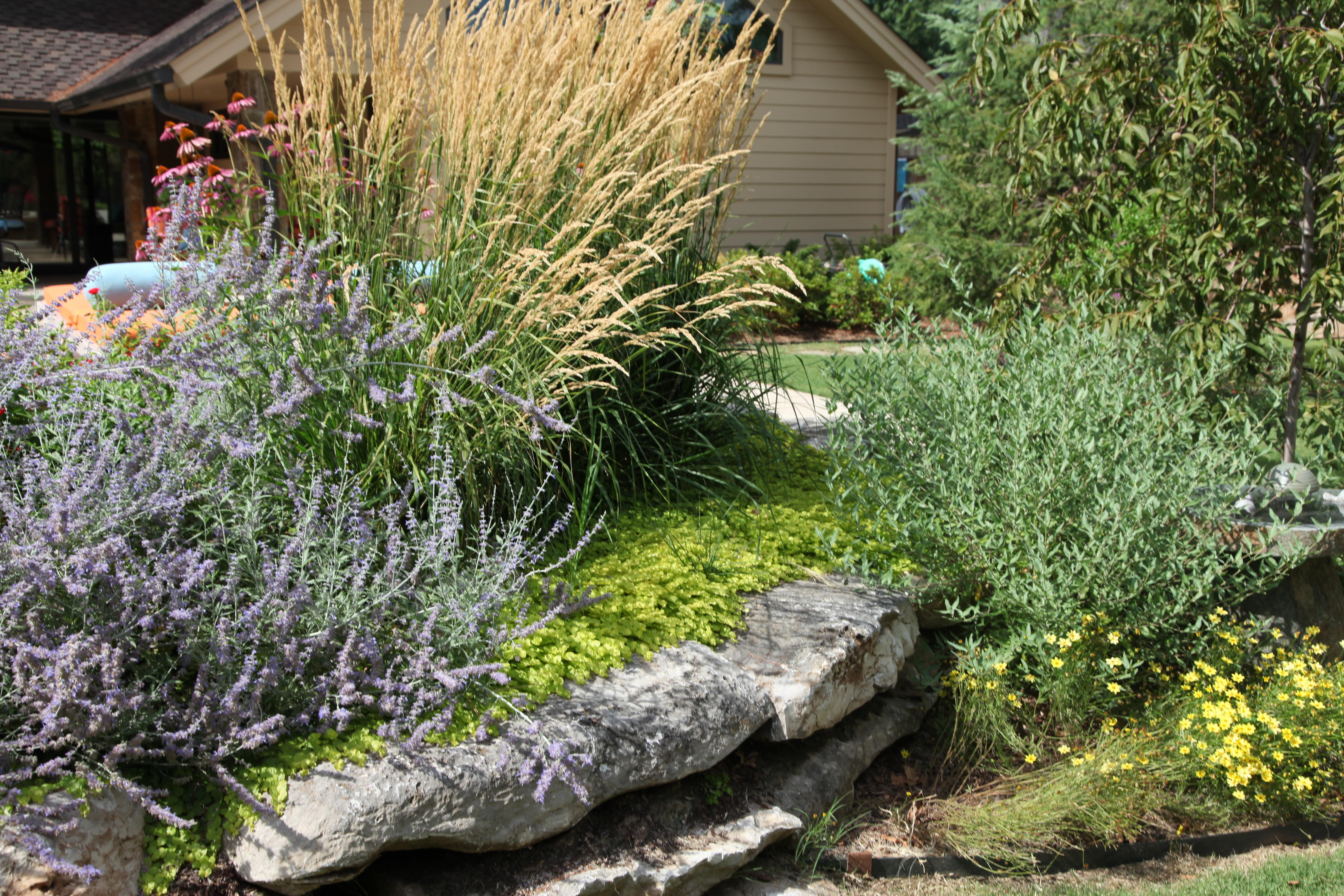 Low Maintenance Landscaping Tulsa Conserving Time