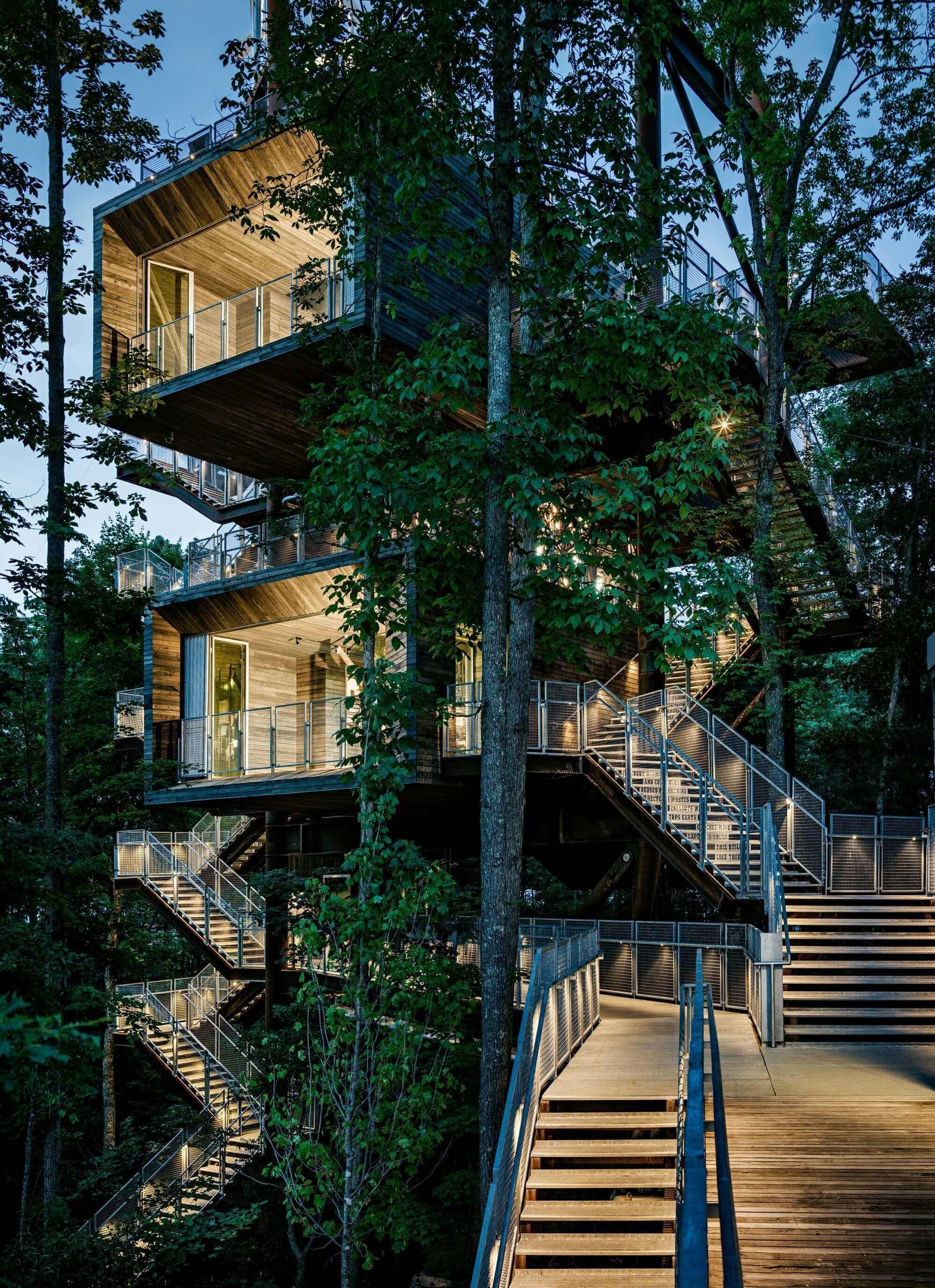 Luxury Cool Tree House Designs Forces Say