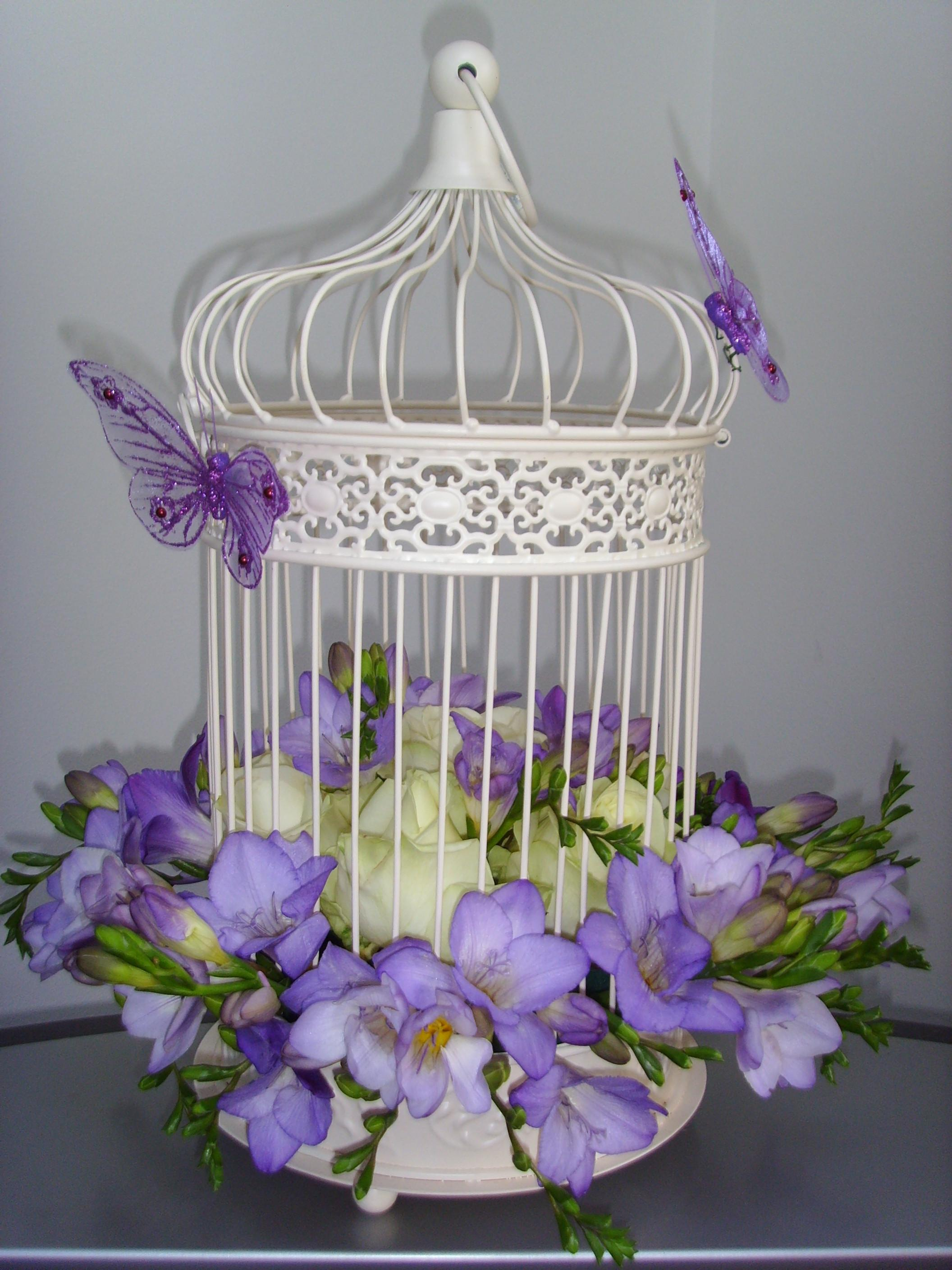 Luxury Decorating Bird Cages Home