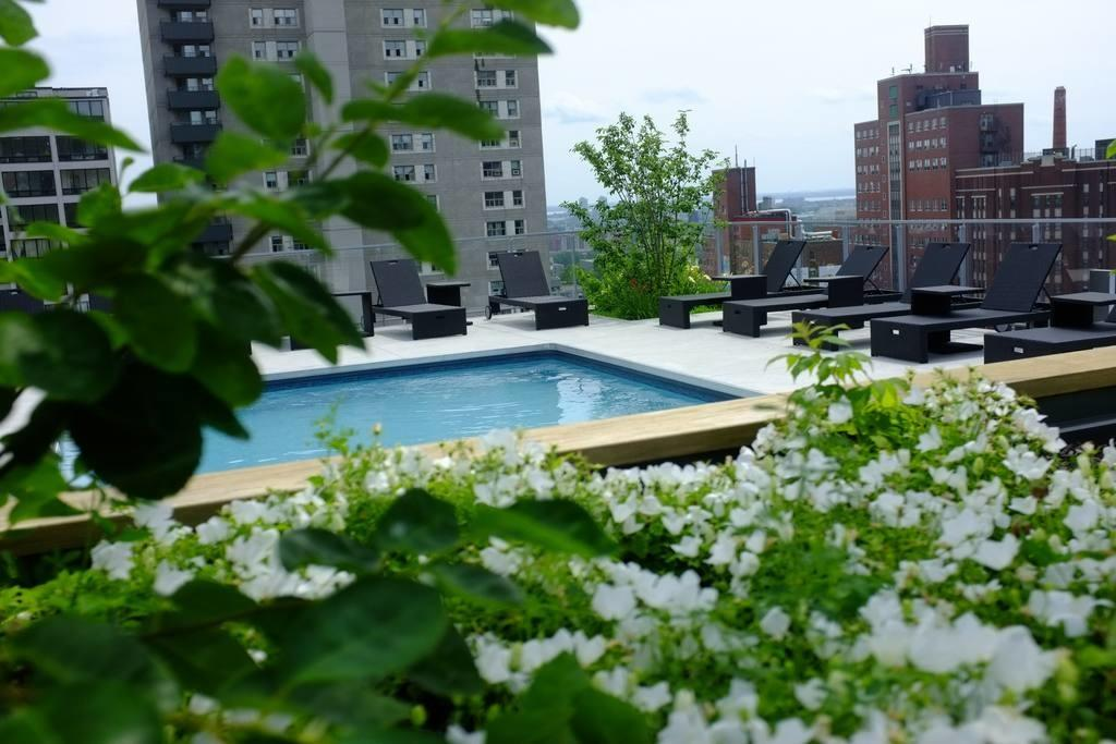 Luxury Fully Furnished Apt Montreal Apartments Rent