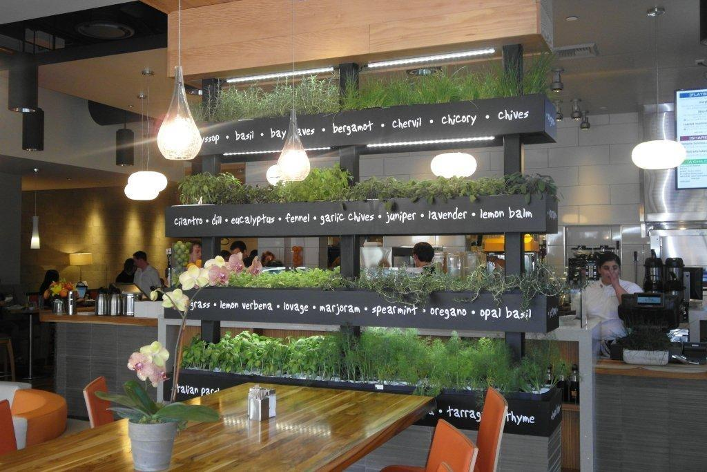 Lyfe Kitchen Green Restaurant Design Tips Trends