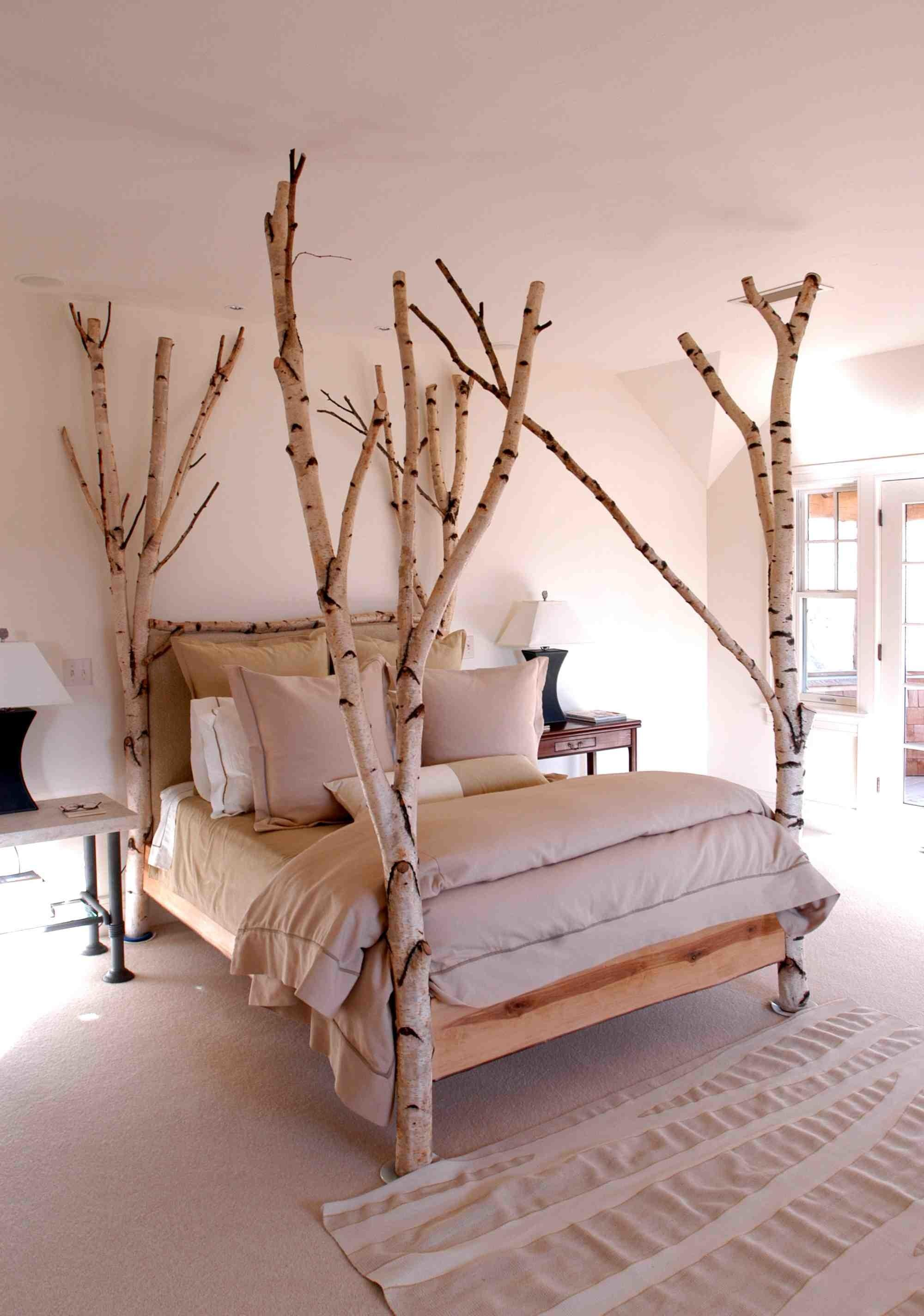 Magnificent White Bark Tree Bed Yourself Fun Ideas