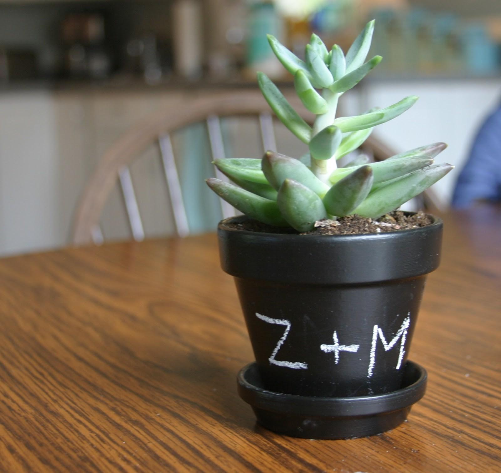Make Bake Love Diy Chalkboard Planters