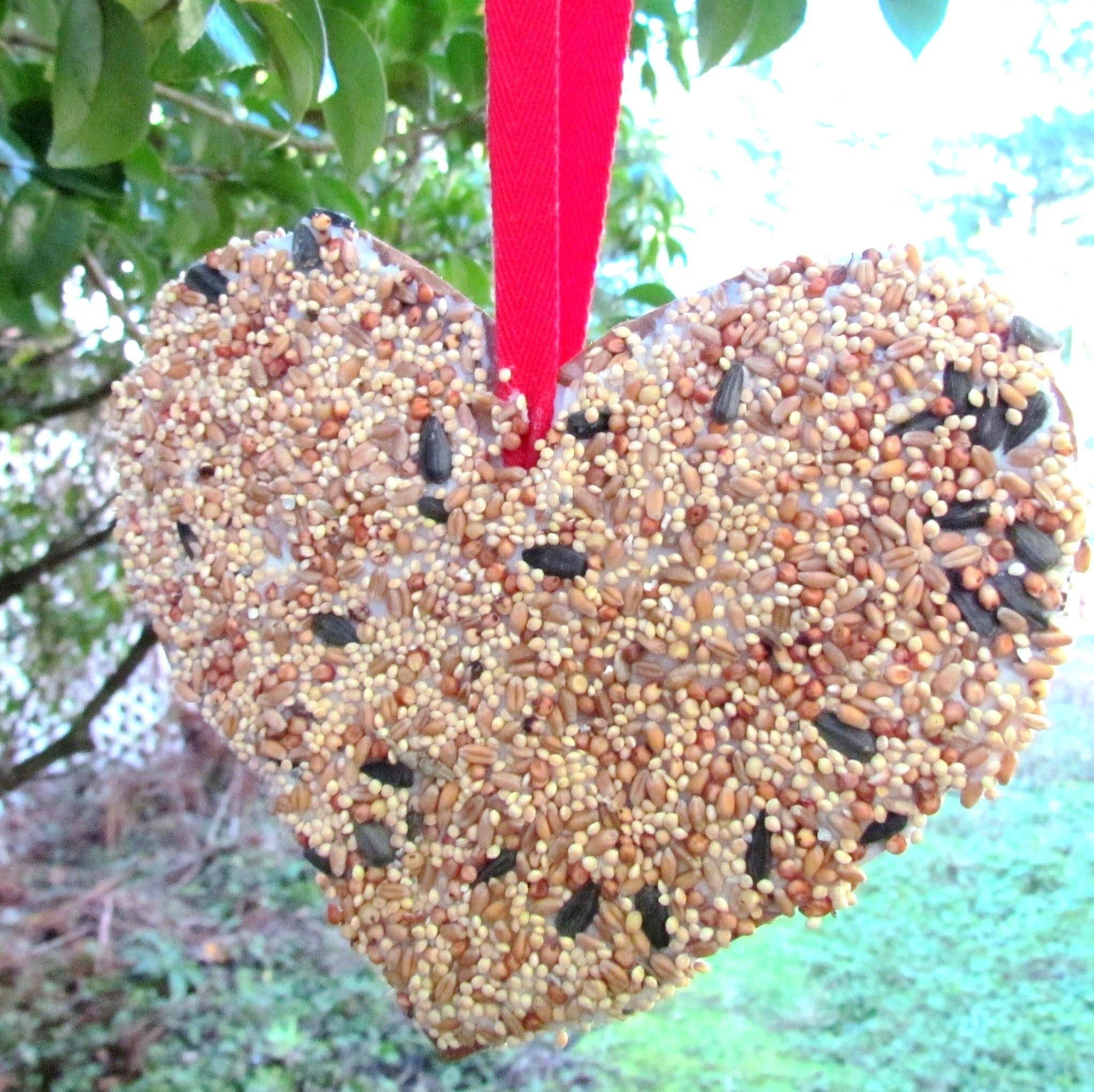 Make Bird Feeder Valentine Day Heart Craft