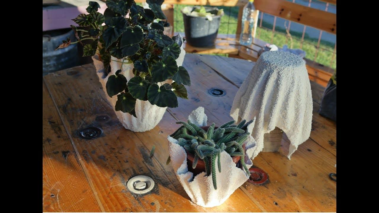 Make Cement Planters Diy Planter