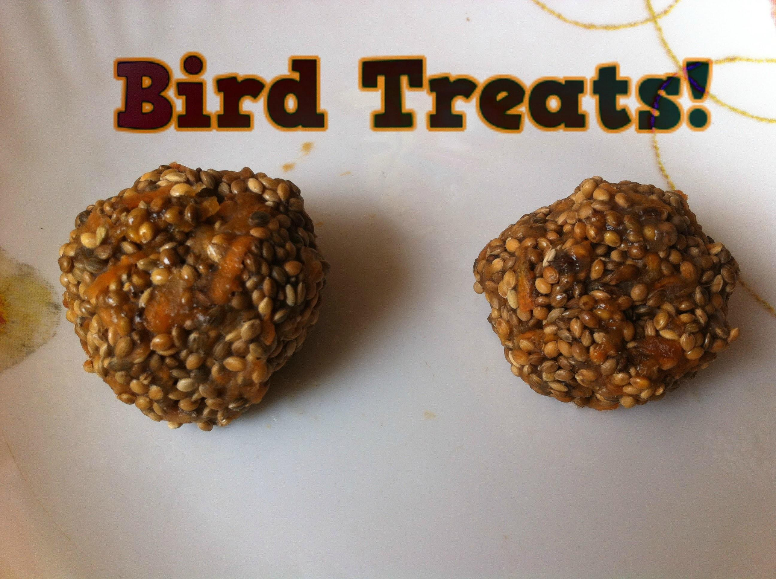 Make Easy Homemade Bird Food Treats