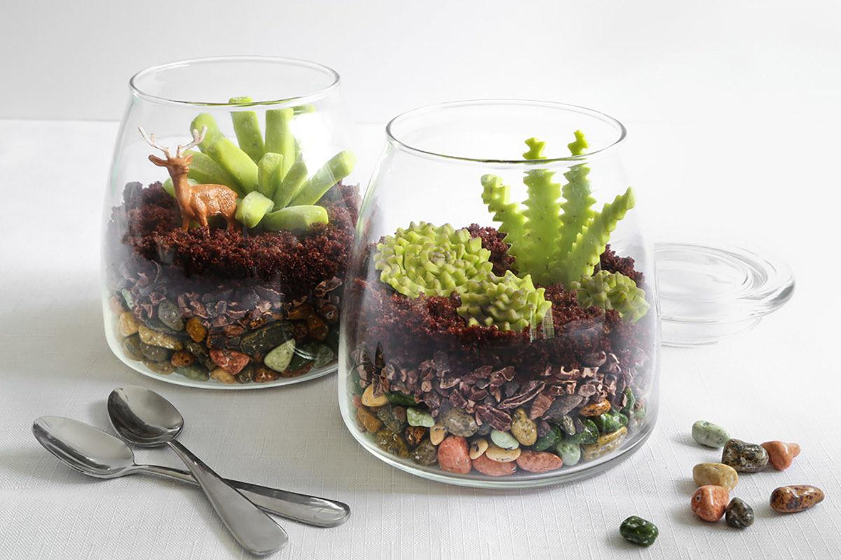 Make Edible Terrarium Etsy Journal