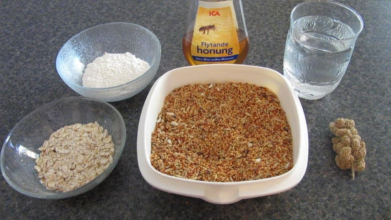 Make Healthy Homemade Bird Treats All Birds