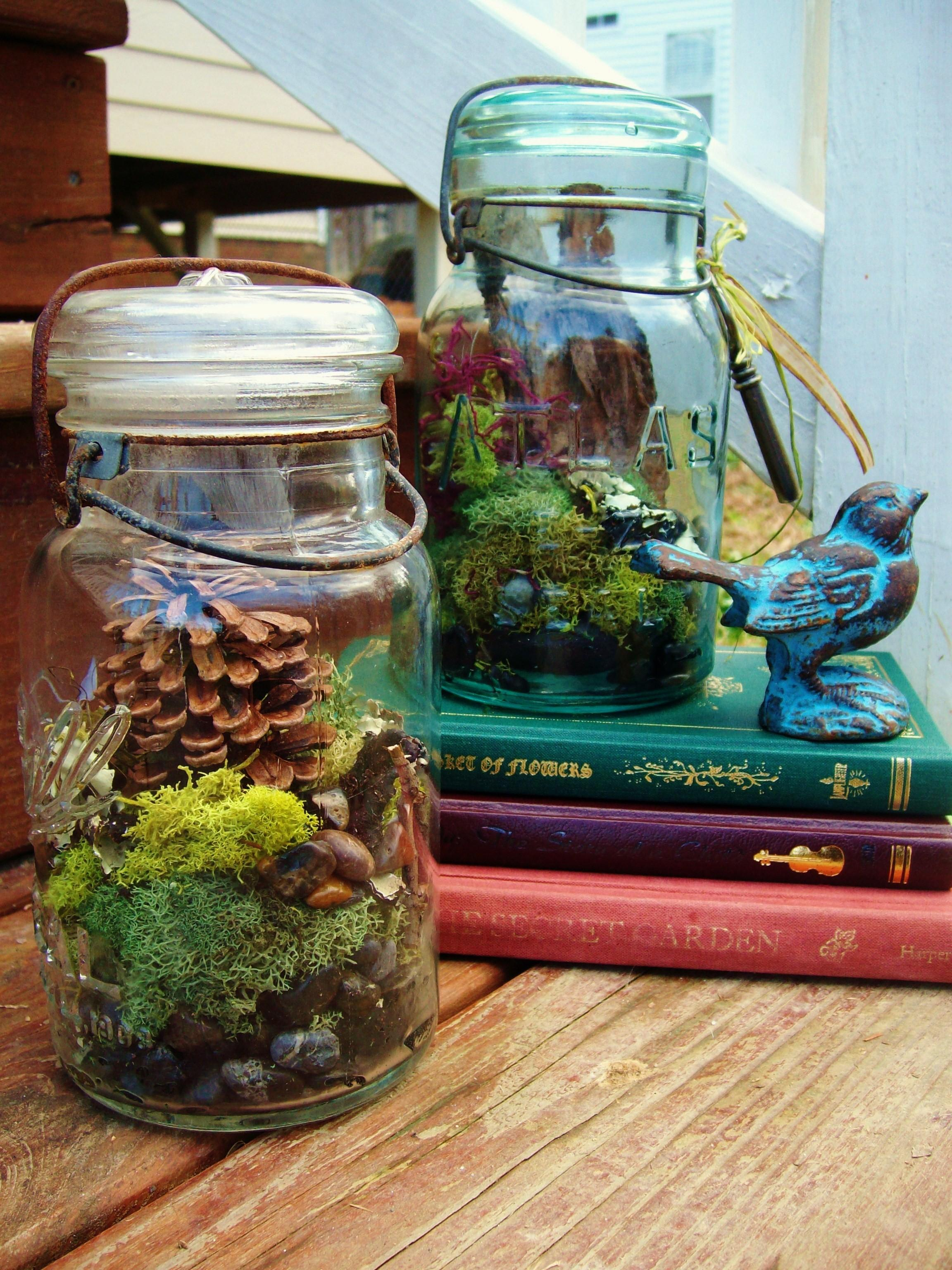 Make Mason Jar Terrariums Diy Tutorial Folk